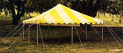 Where to find CANOPY 16  X 16  APC Yellow White in Burnsville