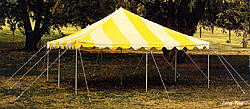 Where to find CANOPY 20  X 20  APC Yellow White in Burnsville