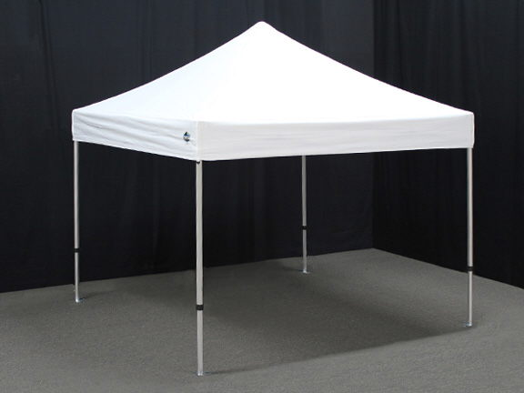 Where to find CANOPY 10  X 10  KING White in Burnsville