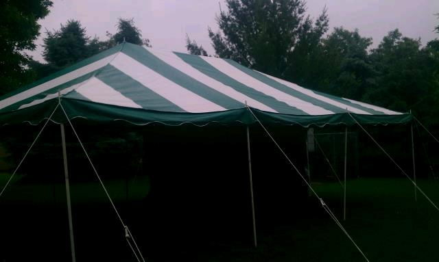 Where to find CANOPY 16  X 16  APC Green White in Burnsville