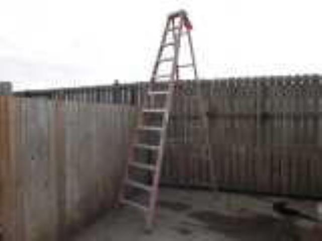 Where to find Ladder 12 Ft Fiberglass Step in Burnsville